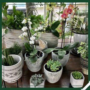 vasos de decoracao varanda moveis valinhos
